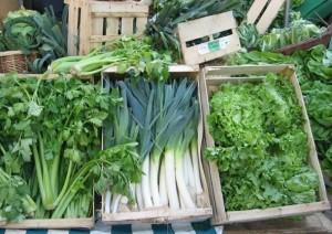 Fresh organic greens provide good nutrients